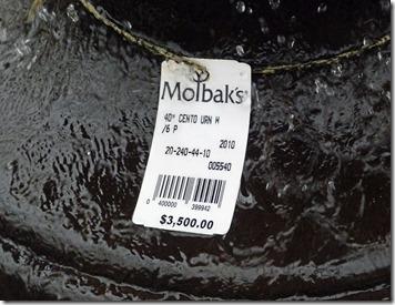 Molbaks 7