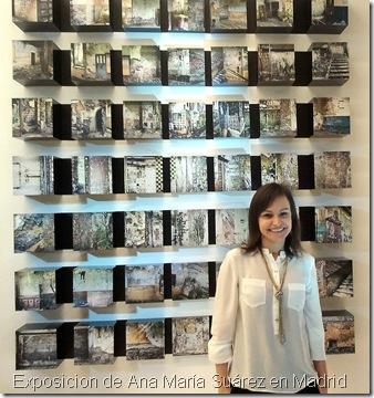 Exposicion de Ana María Suárez en Madrid