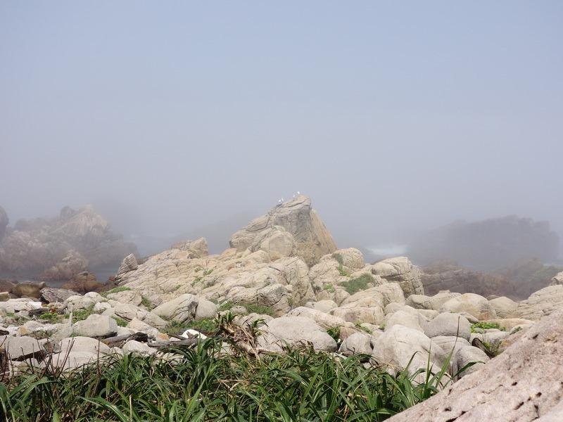2013_0316-0317 龍洞攀岩‧黃金谷&校門口_078