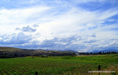 Methow Valley 1