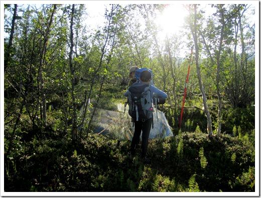 Mitt i skogen hittade vi experiment.