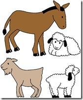 f_animals