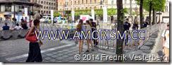 DSC01872.JPG EU val 2014 staket med amorism