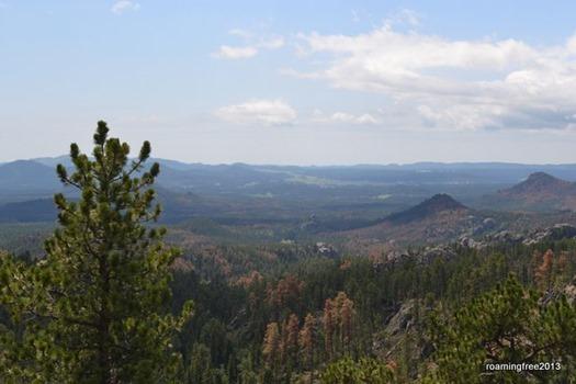 Overlooking theBlack Hills