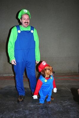 mascotas disfrazadas humor halloween (5)