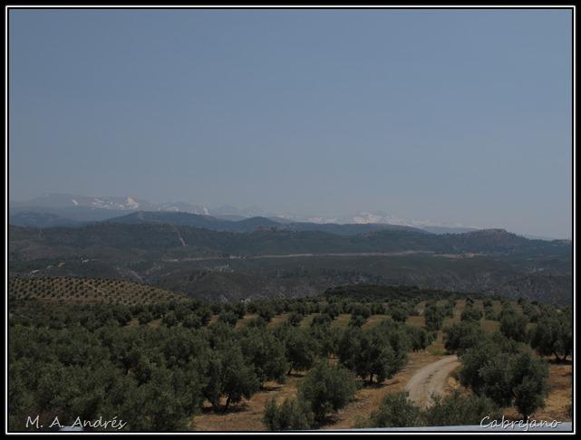 Sierra Nevada 004