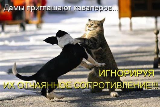 1873d6eddcd872a3bdbe0839b8c_prev