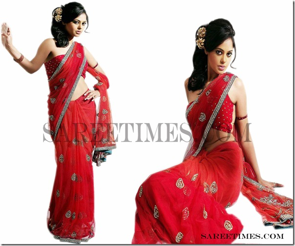 Bindhu_Madhavi_Red_Designer_Saree