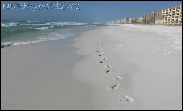 IMG_0135 FootprintsInThe Sand