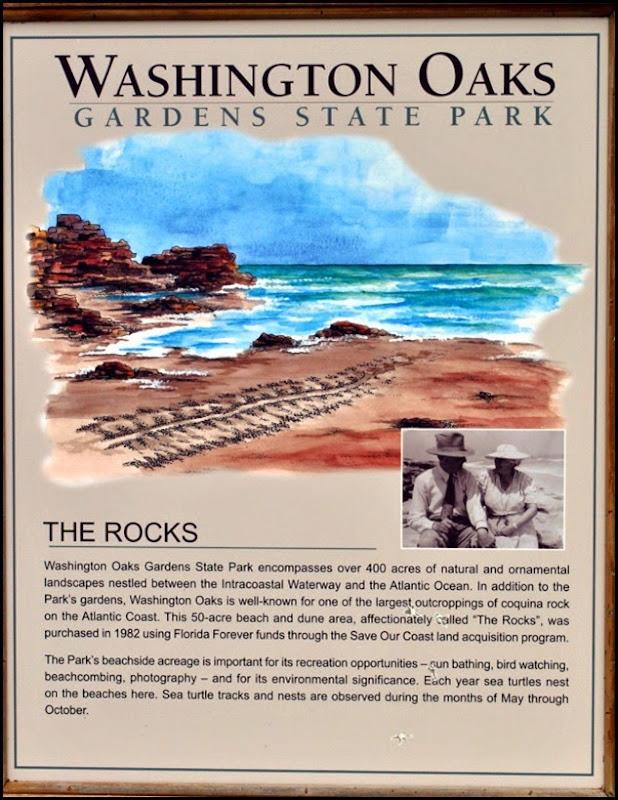 05b - Washington Oaks - The Rocks