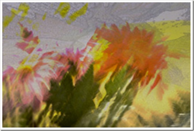 Flowers in abstract with pdpa sibelle