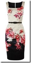 Coast Satin Print Dress
