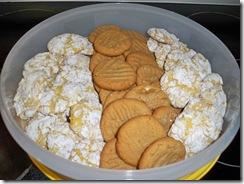 cookie20