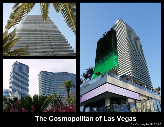 The Cosmopolitian