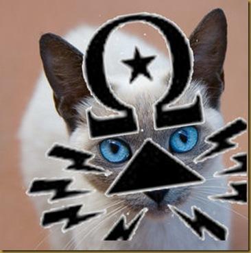 ciphercat