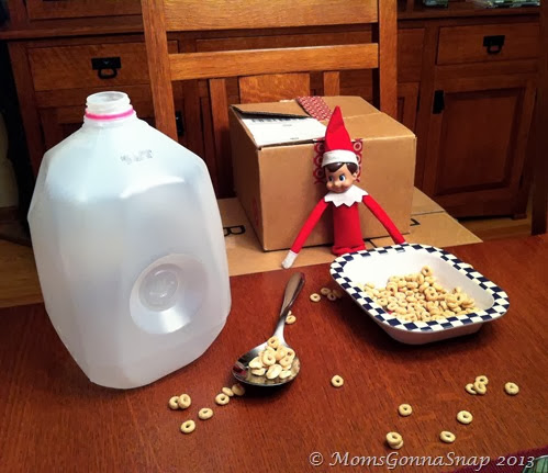 Elf on the Shelf by MomsGonnaSnap (2)