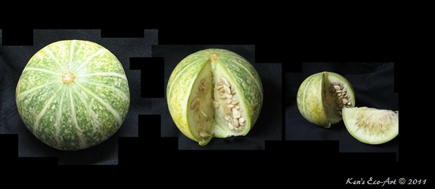 E-Melon triptech