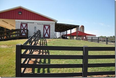 southern belle farm 100611 (5)