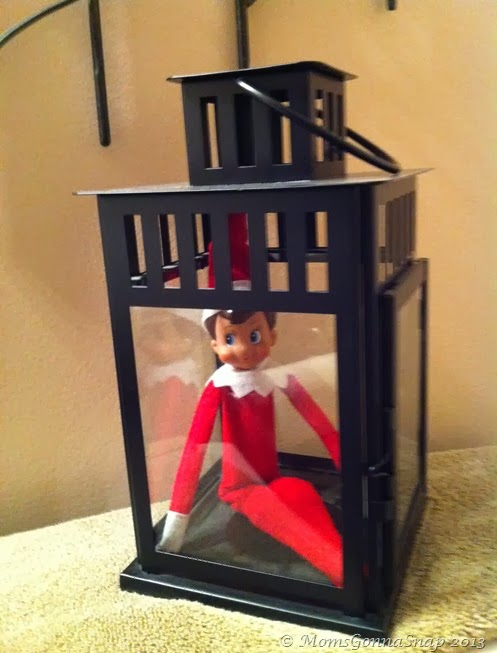 Elf on the Shelf by MomsGonnaSnap (12)