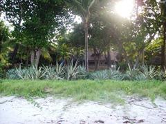 Mombasa Resort