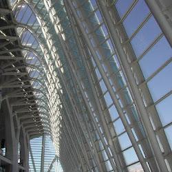 41.- Calatrava. Museo de Ciencias