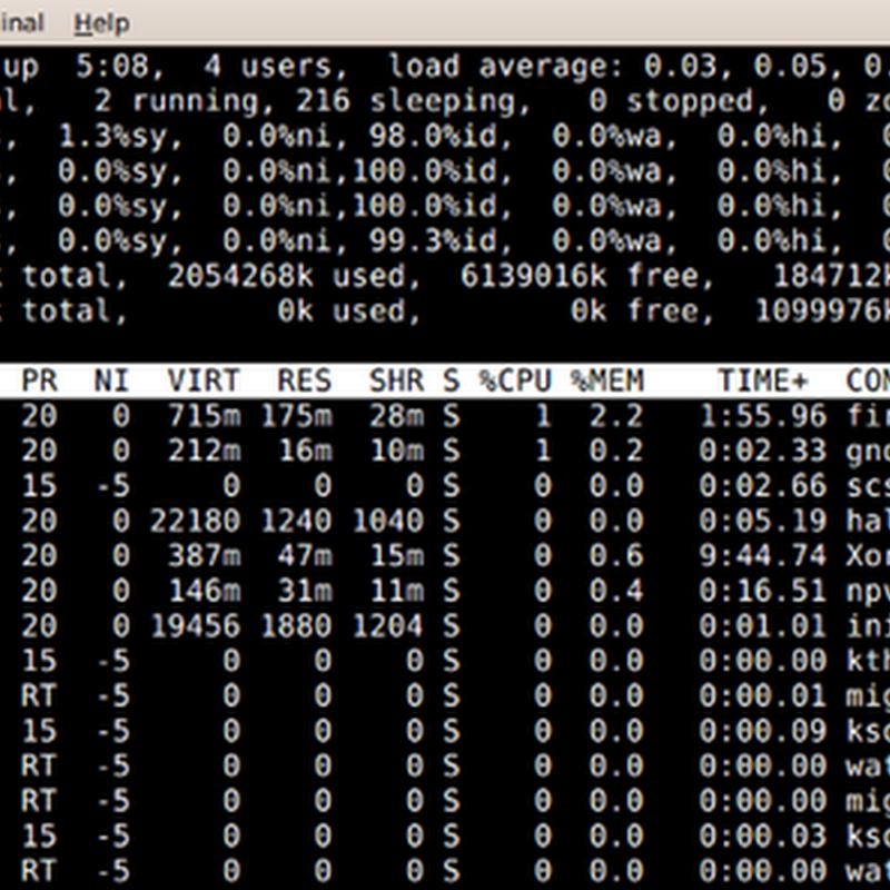I comandi ps e top mostrano lo stato dei processi in corso all'interno del sistema.