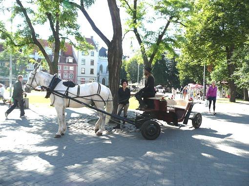 Рига, экологически чистый транспорт