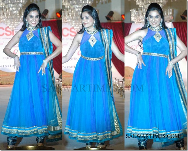 Nisha_sagar_Collection (5)