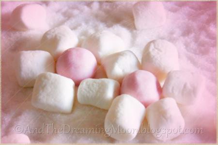 Fuwarinka Rose Candies and Marshmallows