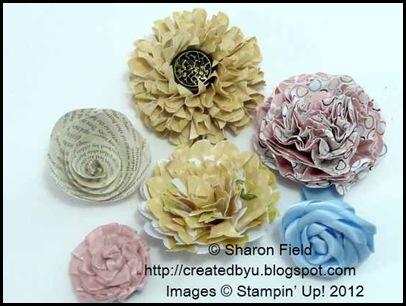 starburst flower, flowers, sharon_field, createdbyu, super_staruday