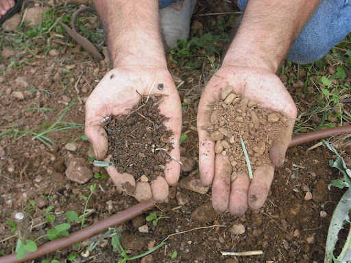 Soil vs dirt what is the difference askmax for Topsoil vs potting soil