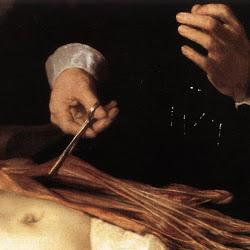 222 leccion anatomia d Tulp.jpg