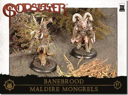 TrooperBox_Banebrood_MaldireMongrels