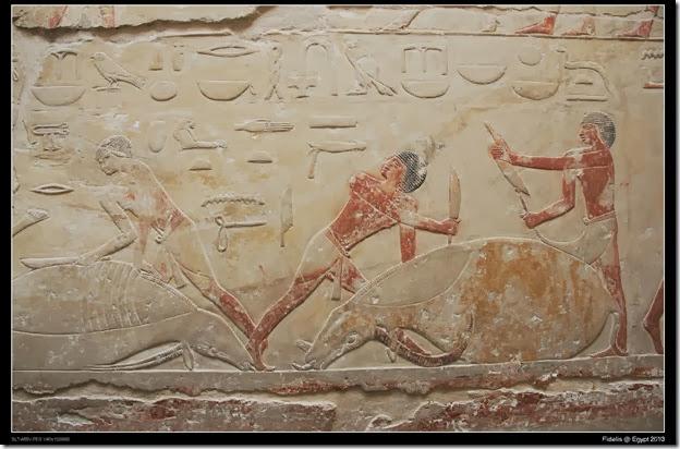 Egypt Day 11_03-16