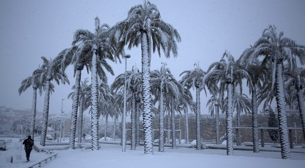 Snow blankets palm trees in Jerusalem, 10 January 2013. Weather extremes that are growing more frequent and intense globally. Menahem Kahana / Agence France-Presse / Getty Images