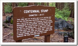 P1160503 - Centennial Stump sign #2
