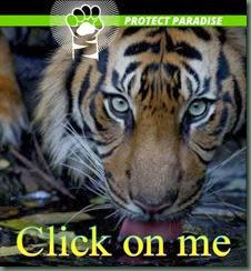 protectparadise