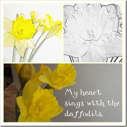 daffodil five mosiac