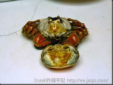 江蘇超A級爆膏大閘蟹-蟹膏1