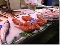 O grămadă de pești proaspăt pescuiți