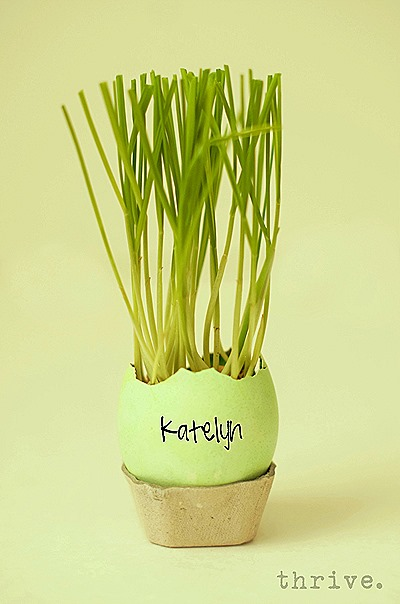 Easter Egg Wheat Grass Centerpiece from THRIVE.4