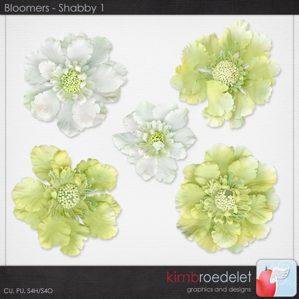 kb-Bloomers_shabby1