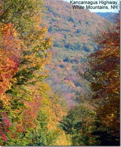 Kancamagus Highway, White Mountains, NH