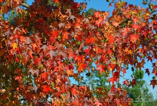 3  Glória Ishizaka - Folhas de Outono 2013