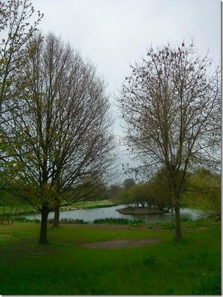 Warwick University Lake