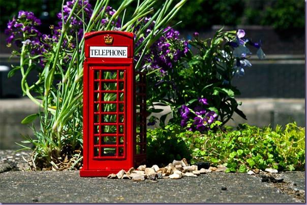 Mini-Jardim-Cabine-Telefônica-Londres