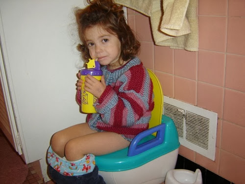 how to start potty training a 14 month old girl