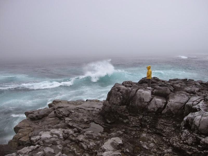 0703-01-Wild waves