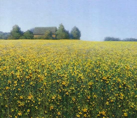 Rapeseed oil painting landscape artist Daniil Belov