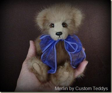 1-Merlin (16)